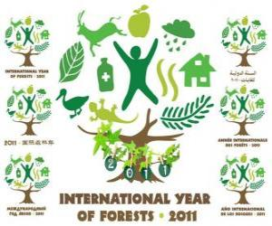 2011 International Year of Forests puzzle