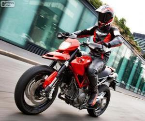 2013 Ducati Hypermotard 1100EVO puzzle