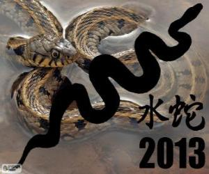 2013, the year of the Water Snake. According to the Chinese calendar, from the February 10, 2013 to 30 January 2014 puzzle