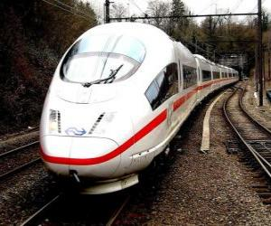 A bullet train or high speed passenger train puzzle