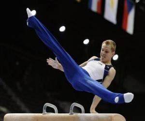 A gymnast performs his exercise on the pommel horse puzzle