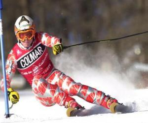 A skier in slalom competition puzzle
