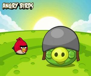 A small red bird next to a pig with helmet puzzle
