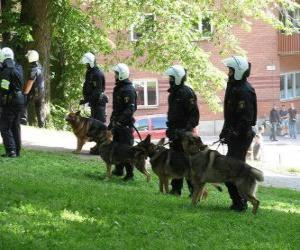 Agents of riot police with dogs puzzle