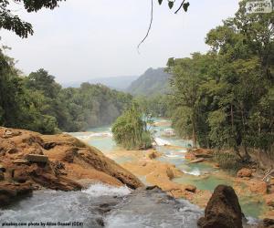 Agua Azul cascades, Mexico puzzle