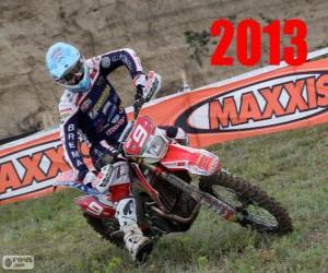 Alex Salvini world champion of enduro 2013 puzzle