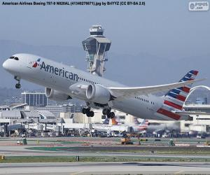 American Airlines puzzle