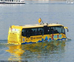 Amphibious Bus puzzle