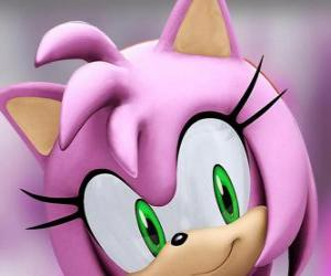 Amy Rose is a pink hedgehog with green eyes, is madly in love with Sonic puzzle