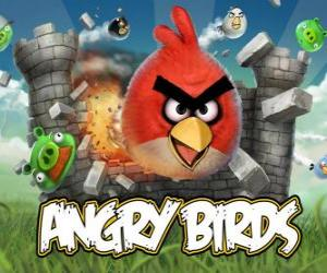 Angry Birds Rovio is a video game. Angry birds attack the pigs who steal eggs puzzle