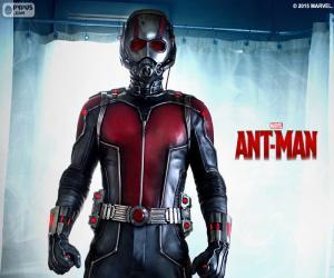Ant-Man puzzle