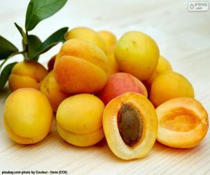 Apricots puzzle