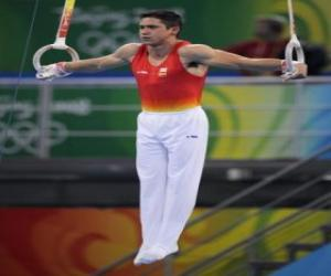 Artistic gymnastics - Still rings puzzle