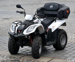 ATV or quad puzzle