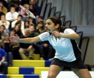 Badminton player puzzle