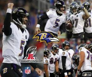 Baltimore Ravens the 2012 AFC champion puzzle
