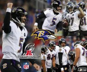 Baltimore Ravens the 2012 AFC champion puzzle