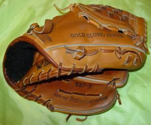 Baseball glove puzzle