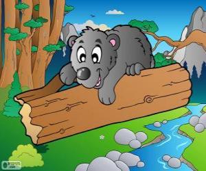 Bear cub puzzle