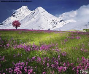 Beautiful scenery of the Alps puzzle