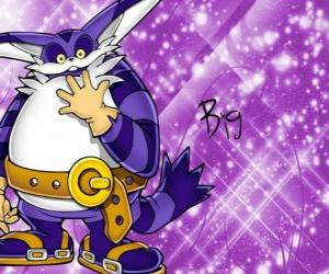 Big the Cat, the large cat who appears in the adventures of Sonic puzzle