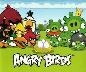 Birds, eggs, and green pigs in Angry Birds puzzle