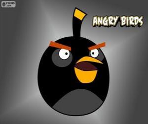 Black Bird, Angry Birds puzzle