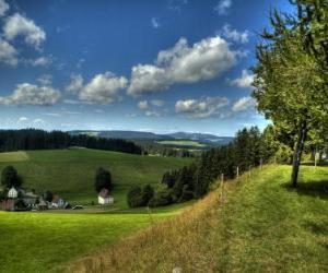 Black Forest Landscape puzzle