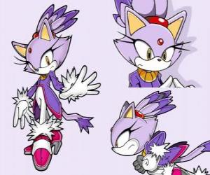 Blaze the Cat, a princess and one of the Sonic friends puzzle
