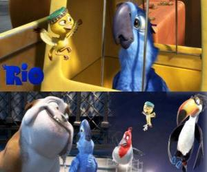 Blu along with other characters in the film Rio puzzle