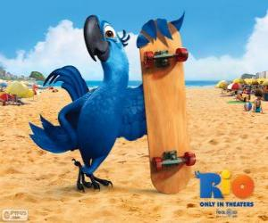 Blu is a fun macaw and the main protagonist of the film Rio puzzle
