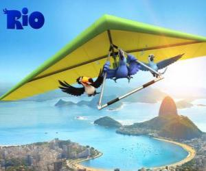 Blu macaw, toucan Rafael Jewel and a hang glider flying over the city of Rio de Janeiro puzzle