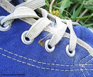 Blue shoe puzzle