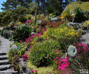 Botanical garden puzzle