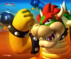 Bowser or King Koopa, the main enemy in Mario's games puzzle