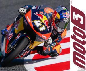 Brad Binder, Moto3 2016 puzzle