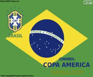 Brazil, Champion Copa America 2019 puzzle