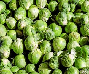 Brussels sprouts puzzle