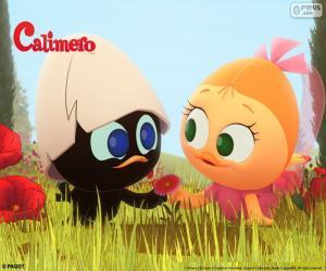 Calimero and Priscilla puzzle