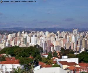 Campinas, Brazil puzzle
