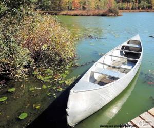 Canoe puzzle