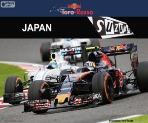 Carlos Sainz Jr., 2016 Japanese GP puzzle