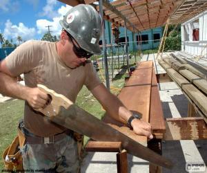 Carpenter puzzle