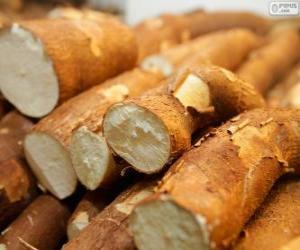 Cassava puzzle