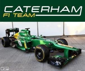 Caterham CT03 - 2013 - puzzle