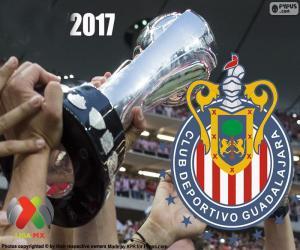 C.D. Guadalajara, Clausura 2017 champion puzzle