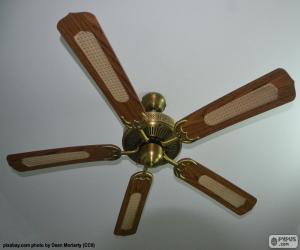Ceiling fan puzzle