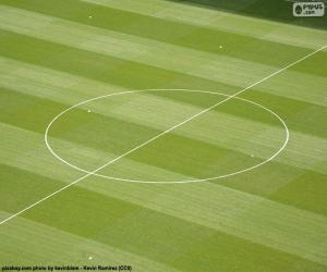 Center circle of a soccer field puzzle