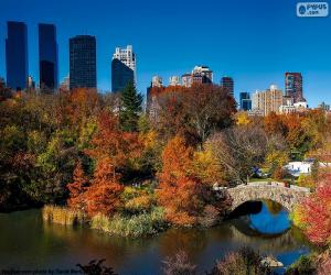 Central Park, New York puzzle