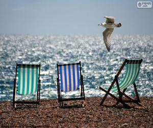 Chairs and gull puzzle